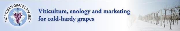 Northern Grapes Project Header